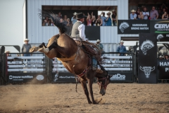 Bradley Anderson showing the Old Time Bronc Riding