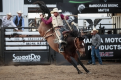 Alex Wright on CS S-15 Sergeant Whitney at Hardgrass Bronc Match 2018