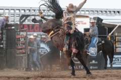 Short Round Clay Elliott on C S-83 Special Delivery at Hardgrass Bronc Match 2018