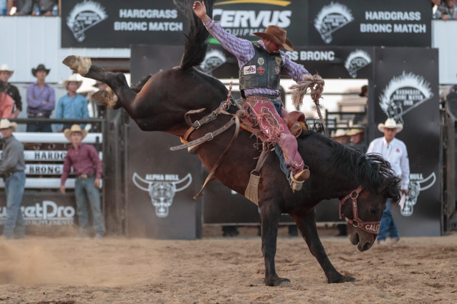 Short Round Sam Kelts on CS T-38 Timely Delivery at Hardgrass Bronc Match 2018